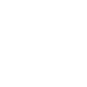 Palm-Script-Logo-Filled-White